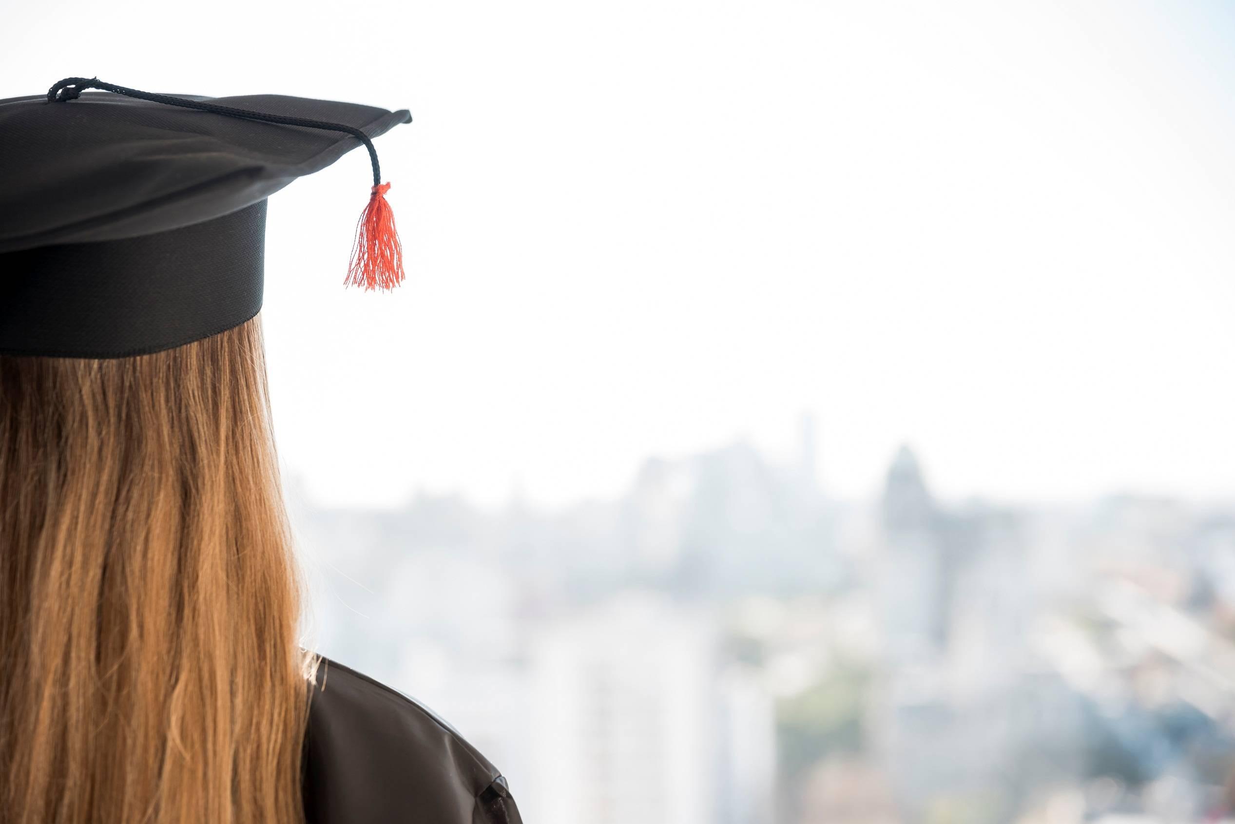 Bachelor gestion